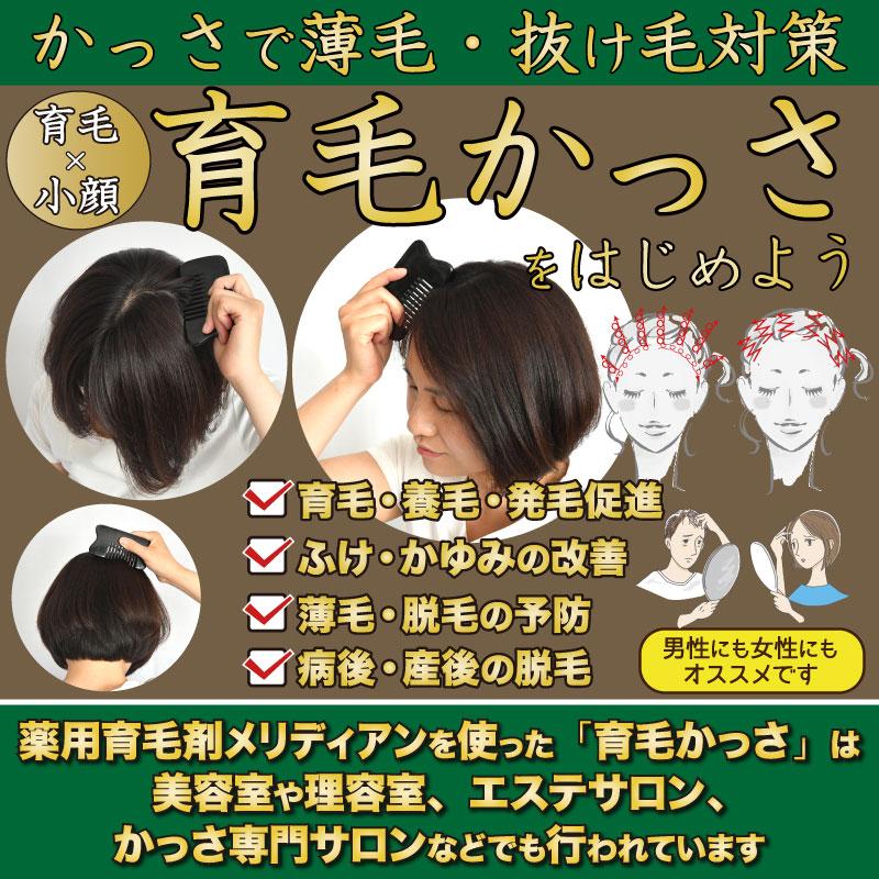 かっさと薬用育毛剤の育毛効果で薄毛を改善して小顔になる育毛かっさ