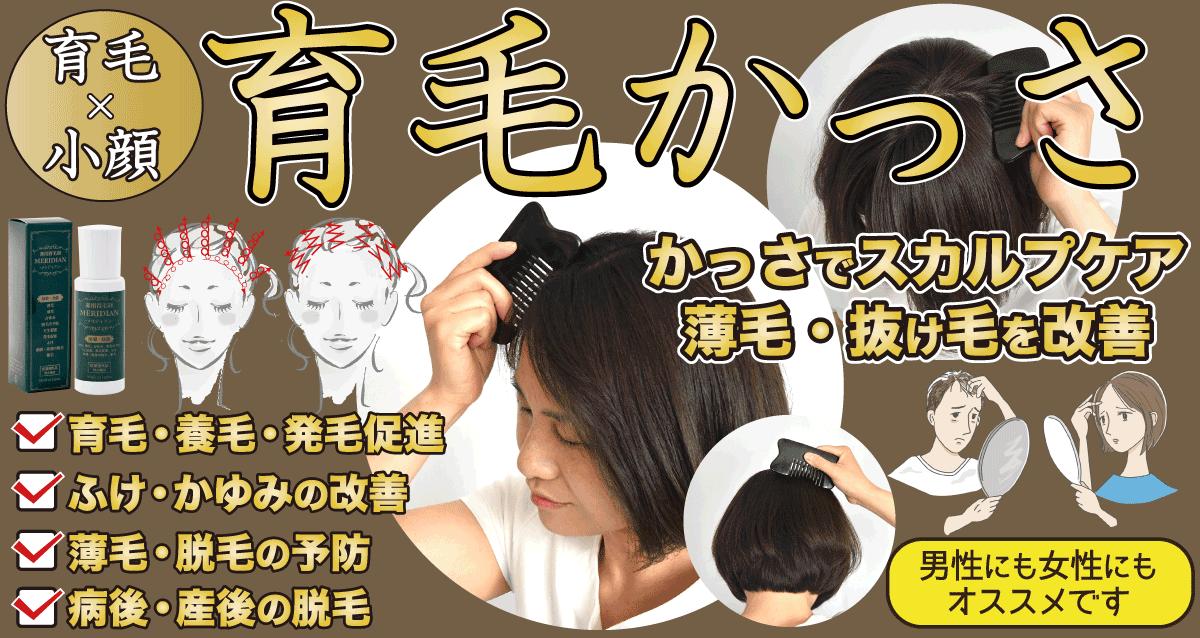かっさでスカルプケア 薄毛・抜け毛を改善する育毛かっさ